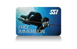 Free Immersion